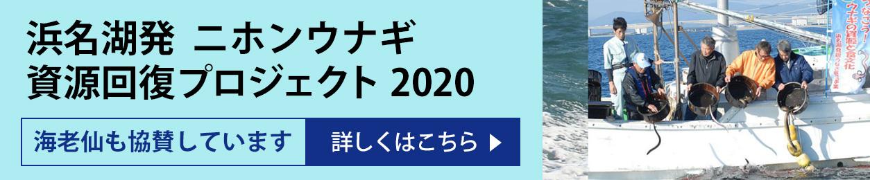 浜名湖発「二ホンウナギ資源回復プロジェクト2020」海老仙も協賛しています 詳しくはこちら